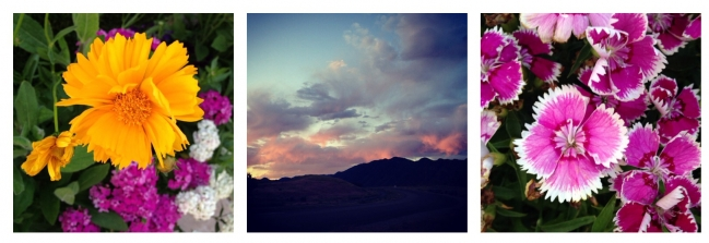 Beautiful sunrise on my morning stroll.